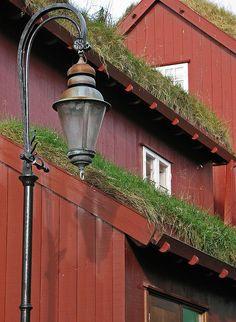 Grass Roofs in Tórshavn, Faroe Islands
