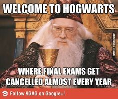 Today we collect some Harry Potter Memes Hogwarts that are so funny. Just read out these Harry Potter Memes Hogwarts. Memes Do Harry Potter, Fans D'harry Potter, Harry Potter World, Harry Potter School, Potter Facts, 9gag Funny, Funny Memes, Hilarious Texts, Top Memes