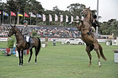 Baloubet du Rouet makes an appearance in Estoril during Longines Global Champions Tour event to honor Chaman, his most successful offspring. Noelle Floyd