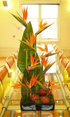 bird of paradise arrangement