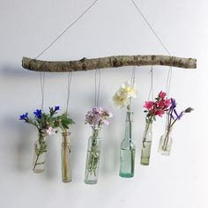 Precious wild finds from the hedgerow as they bust into blossom. I am learning to love the sound of my feet walking away from things not meant for me. Learn To Love, Plant Hanger, Wind Chimes, Flower Power, Floral Arrangements, Glass Vase, Learning, Outdoor Decor, Instagram Posts