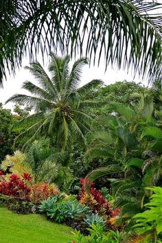Stunning 47 Change Your Garden With Tropical Landscape Design You'll Love decora… - Garten Landschaftsgestaltung Tropical Backyard Landscaping, Tropical Garden Design, Tropical Plants, Landscaping Ideas, Tropical Gardens, Tropical Beaches, Landscaping Software, Backyard Ideas, Hawaiian Gardens