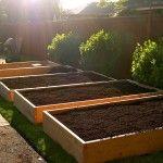 Rasen zum Garten in 6 einfachen Schritten – LAWN TO GARDEN IN A SINGLE WEEKEND