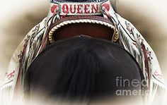 Rodeo Queen by Bucklew Photography