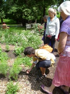 Shambhalla Institute Shamanic, Sustainable & Edible Gardening Class at the Omega Institute, Rhinebeck NY