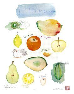 Watercolor fruits. Farming Block.