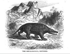 Megalosaurus by Anatotitan, via Flickr