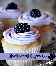 Blackberry Cupcakes. Fresh blackberries with a hint of vanilla does the trick here. #cupcakes #vanilla