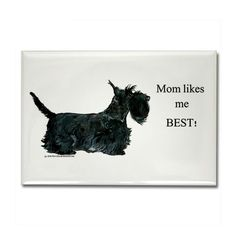 "Amazon.com: CafePress - Mom's Scottish Terrier Rectangle Magnet - Rectangle Magnet, 2""x3"" Refrigerator Magnet: Home & Kitchen"