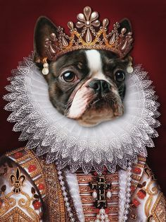 Get a Renaissance custom pet portrait of your best buddy or give it as a gift! Photo Portrait, Portrait Art, Digital Portrait, Digital Art, Portraits From Photos, Dog Portraits, Portrait Renaissance, Good Buddy, Dog Art