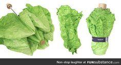 I think I need a lettuce umbrella in my life