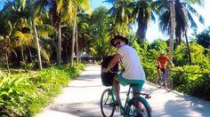 Just a guy on his bike, L'Union Estate Park, La Digue, Seychelles  #beach #seychelles #selfie #gopro #cycling #goprohero #bike #adventure #travel #travelgram #welltravelled #wanderlust #sunshine #traveltheworld #ladigue #beautifuldestinations #explore #traveling #travelstoke #backpacking #hat #fun #happy #paradise #instagood #picoftheday #travel #ocean #free #amazing