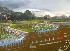 Bishan-Ang Mo Kio Park and Kallang River Restoration - 谷德设计网 Landscape Architecture, Landscape Design, Architecture Plan, Landscape Photos, Landscape Photography, Sponge City, Landscape Diagram, Wetland Park, Ecology Design