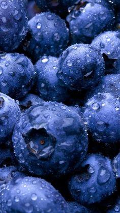 Fruit Bosbes