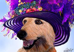 Cosette, the labradoodle is dressed for the Kentucky Derby. She is seen here wearing a couture silk purple hat with large purple and violet feathers, as well as flowers.