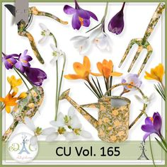 Description: Commercial Use 165 by Doudous Design This set contents 16 elements created and/or photographed and/or extracted by myself. Shadows only on preview  My blog : http://doudouscrap.blogspot.be/