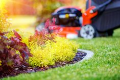 Tips to Ready the Yard for Fall Showings & Enjoyment - Living landscapes Matter