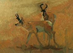 """Wildlife Art International: Original Wildlife Pronghorn Oil Painting """"Pronghorn Pair"""" by Colorado Artist Susan Fowler Wildlife Paintings, Wildlife Art, Oil Paintings, Daily Painters, Cool Art, Awesome Art, Pet Portraits, Art Drawings, Art Photography"""