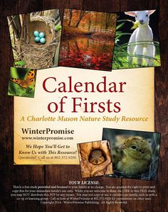 Hooray, Charlotte Mason Freebies!   I am happy to share this free download of a lovely Calendar of Firsts from WinterPromise .   This is...