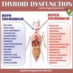 "☛ This chart will help you make the difference between ""Hypo"" and ""Hyper"" Thyroidism. PLEASE check with your health practitioner and do not self diagnose. A blood test will reveal what you have. HYPOTHYROIDISM DRINK: http://www.stepintomygreenworld.com/healthyliving/thyroid-drink/ ✒ Share 