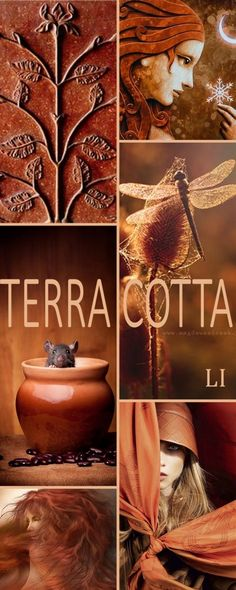 "Hello Ladies. Next up let's pin this color board "" TERRA COTTA "" Thanks so much and Happy Pinning ❤"