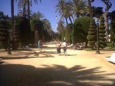 Un paseo por el Parque Genovés • Cádiz, Cádiz • Andalucía, España