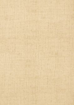 BANKUN RAFFIA, Wheat, T14136, Collection Texture Resource 4 from Thibaut