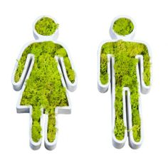 Living wall planters are a great way to green up a small place without sacrificing floor space. Living Wall Planter, Wall Planters, Indoor Garden, Indoor Plants, Moss Graffiti, Growing Plants Indoors, Vertical Planter, Green Art, Plant Wall