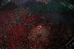 25th Human Tower Competition in Tarragona, Spain, on October 5, 2014