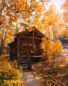 FALL BABY Fall Pictures, Nature Pictures, Cabana, Cabin In The Woods, Autumn Cozy, Autumn Fall, Autumn Scenery, Land Of Enchantment, Fall Scents
