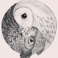 Owl yin yang.