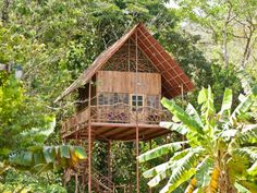 Rainforest Tree House w Hot Springs (Cooper, Alajuela, Costa Rica) - Airbnb Luxury Tree Houses, Cool Tree Houses, Tiny Houses, Crazy Houses, Stay In A Treehouse, Treehouse Living, Places Around The World, Around The Worlds, Houses In Costa Rica