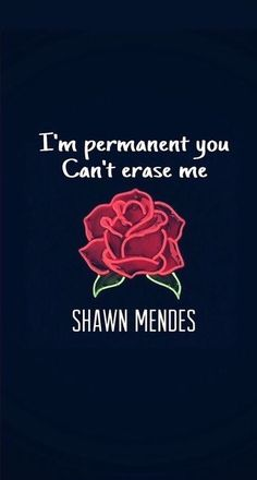Never be alone shawn mendes. Shawn Mendes Fotos, Shawn Mendes Tour, Shawn Mendes Cute, Shawn Mendes Memes, Shawn Mendes Tumblr, Shawn Mendes Song Lyrics, Best Song Lyrics, Song Lyric Quotes, Shawn Mendes Lockscreen