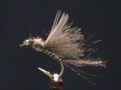 CDC fly - Google Search