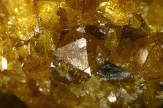 Fluorcalcioroméite, (Ca,Na,◻)2Sb+++++ 2(O,OH)6F,  Starlera Valley, Ferrera, Grischun, Switzerland.  Shiny brownish yellow octahedrons. IMA 2012-093