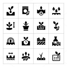 Set icons of seed and seedling. Water Infographic. $5.00