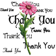 Thank you Everyone for your support on this board. Pretty flower with thank you. Thank You Pictures, Thank You Images, Thank You Messages, Thank You Cards, Thank You Quotes For Support, Birthday Wishes, Birthday Cards, Thank You Greetings, Appreciation Quotes