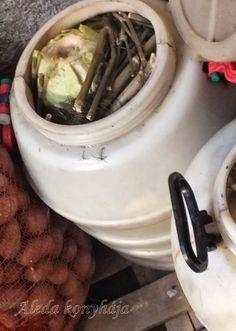 Savanyú káposzta készítése házilag Házi savanyításhoz jó minőségű, téli káposztára van szükség. A káposztát száraz időben kell... Preserves, Pickles, Green Beans, Food To Make, Healthy Recipes, Healthy Food, Vegetables, Healthy Foods, Preserve