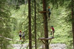 Auch die Kleinen wagen sich in die Höhe & klettern wie die Meister im Hochseilgarten Saalbach  https://www.hotel-talblick.at/sommer/klettern-hochseilpark-saalbach.html