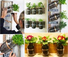 Mason Jar Herb Wall Planters