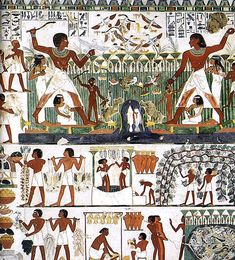 Vinegar in Ancient Egypt: Sour Wine or Tasty Condiment?