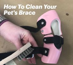 Brace getting a little smelly? Read our blog to learn how to properly clean and maintain your dog's brace. Dog Braces, Your Pet, Cleaning, Pets, Blog, Blogging, Home Cleaning, Animals And Pets