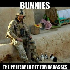 BUNNIES: The Preferred pet for badasses. #rabbit #bunny #bunnies #pets #cuteanimals