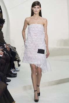 Sfilata Christian Dior Paris -  Alta Moda Primavera Estate 2014 - Vogue