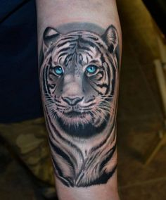 white tiger forearm tattoo with blue eyes