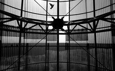Corviale - La torre