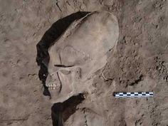 Astounding Discovery In Mexico: 13 Individuals With Elongated Skulls Stun Archaeologists, Never Seen Before In Region