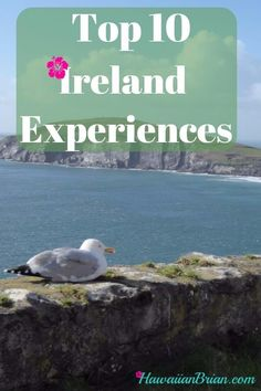 Top 10 Ireland Experiences.  Ireland should be called the country of hospitality. On my journey across Ireland I met some of the nicest people who gave without expectation of reciprocation. Top 10 Ireland Experiences, craic, pub, Dingle Peninsula Loop, Ring of Kerry, Gallarus Oratory, Cliffs of Moher, Bunratty Castle, Dublin Walking Tour, Book of Kells, Aran Islands, Guinness, Dun Aegnus, Rock of Cashel,ireland, ireland travel, ireland landscape, ireland vacation, ireland is the destination,
