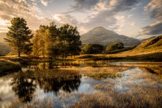 'Old Man in the Trees' by Chris Shepherd. The late autumn sun lends a painterly quality to this image of Kelly Hall, a small tarn in the Lake District - from the Landscape Photographer of the Year competition. Lake District, Cool Landscapes, Beautiful Landscapes, Landscape Photos, Landscape Paintings, Photos Voyages, 10 Picture, Take Better Photos, English Countryside