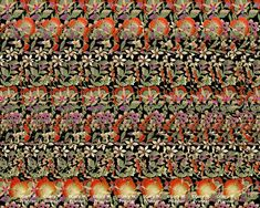 3d hidden pictures | Paisley Flowers : Stereogram Images, Games, Video and Software. All ...